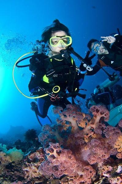 技客区_爱海洋 爱潜水